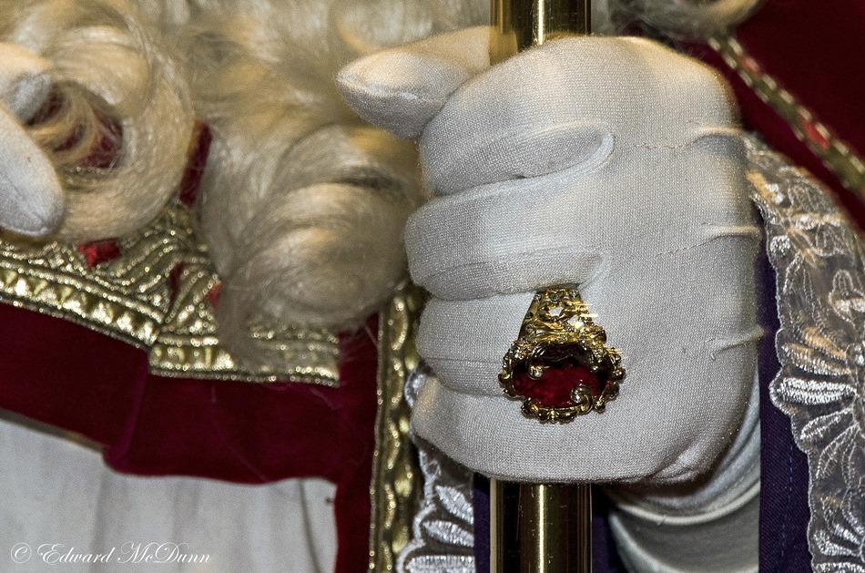 Bisschopswijn (4)