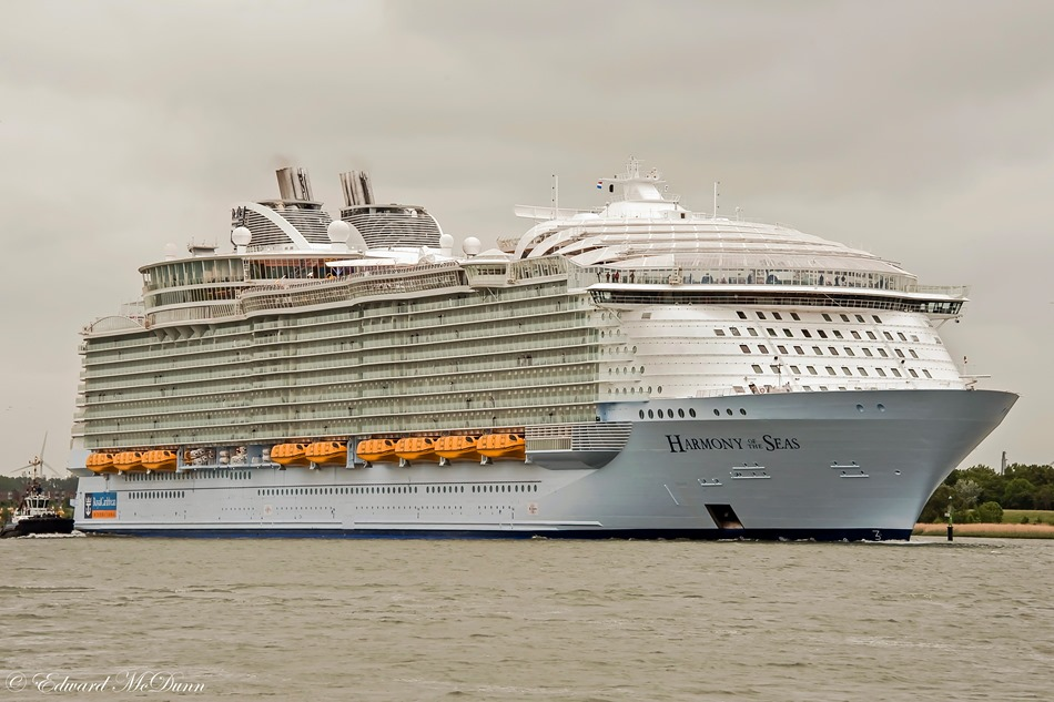 Cruise (2)