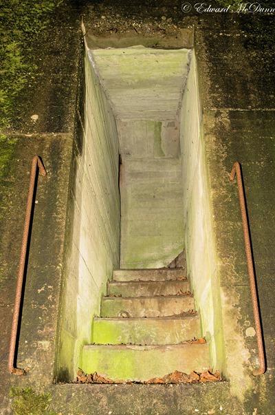 Bunkers Staelduinsebos (3)