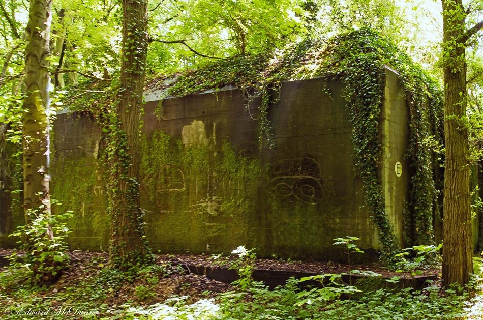 Bunkers Staelduinsebos (7)
