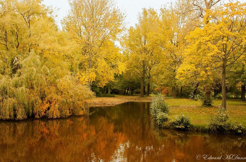 Herfst op volle roeren (10)