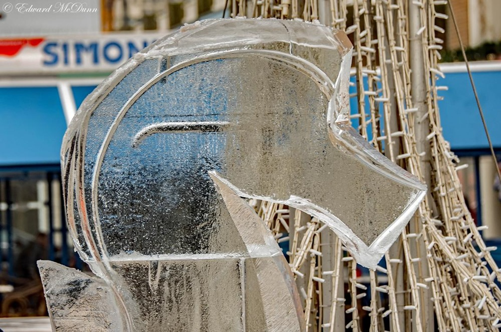 NK ice carving (6)