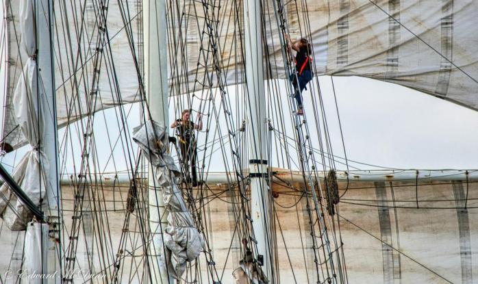 Sail op Scheveningen (5)
